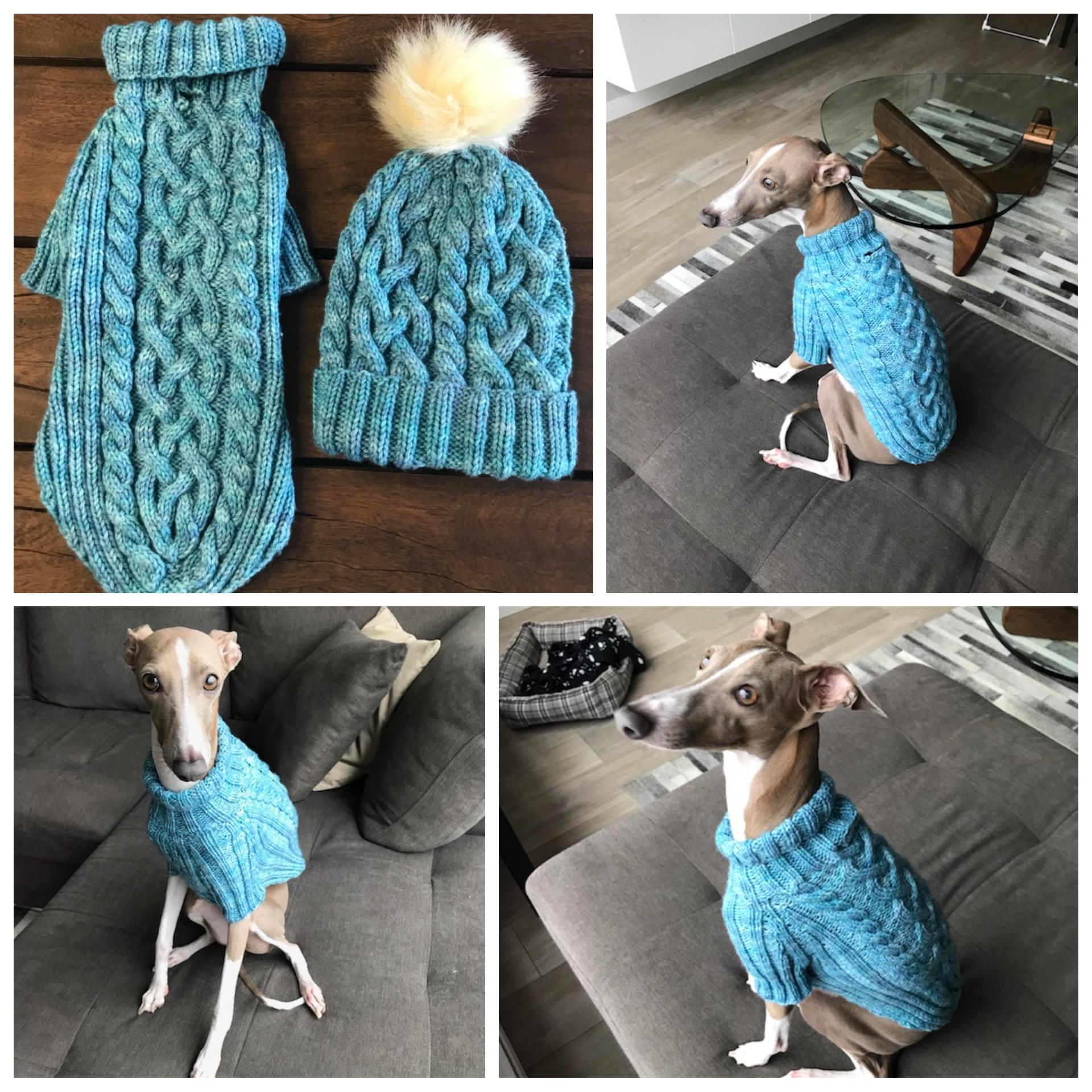 Easy Tips for Crochet Greyhound Sweater Pattern Knit A ...